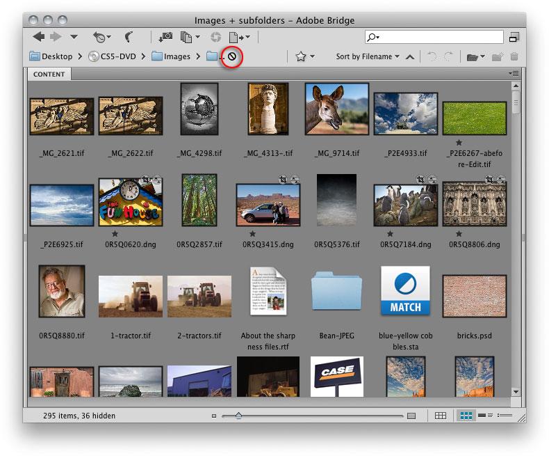 Adobe Photoshop Cs5 User Manual Pdf